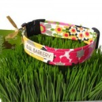 """Pretty In Pink"" Collar"