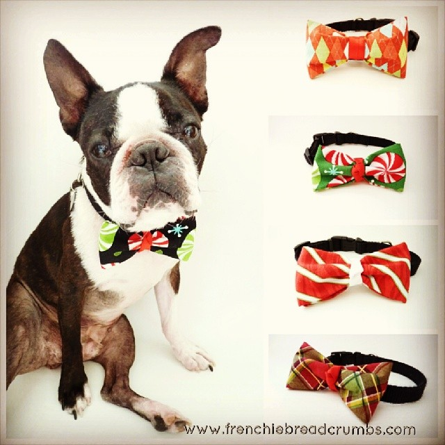 Last chance to get your holiday bowties by Christmas! Order today! www.frenchiebreadcrumbs.com/shop/ #lastminshopper