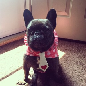 Sweet-Mona-is-showing-all-the-boys-how-a-girl-rocks-the-Cassanova-necktie-www.frenchiebreadcrumbs.co_1