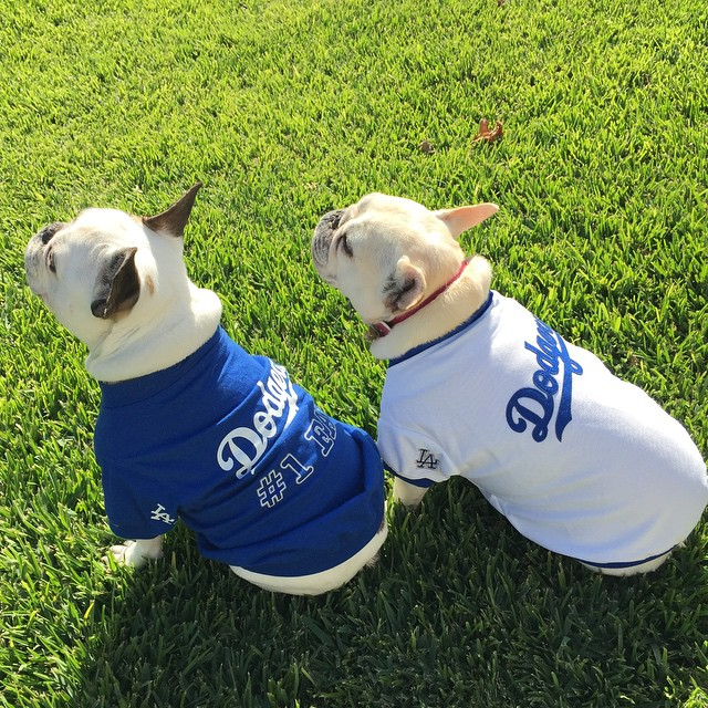 Good win Dodgers! You killed it like we did our hot dogs and nachos! #openingdayla #dodgers #itfdb!